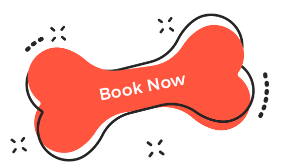 http://pawsitive.bold-themes.com/buddy/wp-content/uploads/sites/2/2019/08/book_now.png